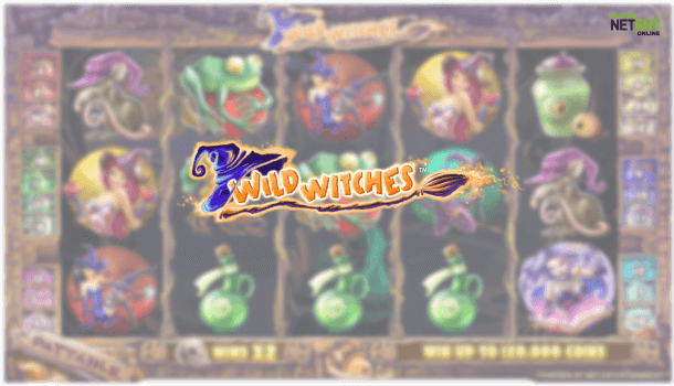 wild witches netent slot